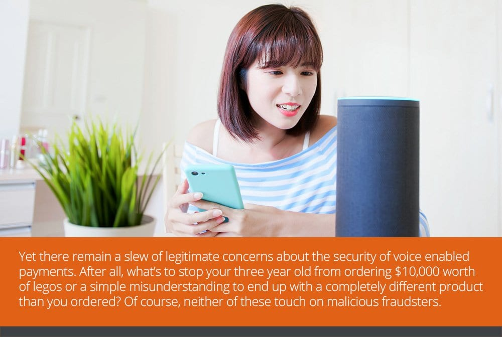 Are Voice-Enabled Payments Secure?